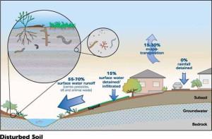 urban water runoff